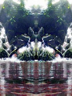 creekmonkey_web.jpg